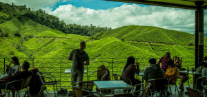 cameron-highlands-BOH-Tea-Plantation-Factory