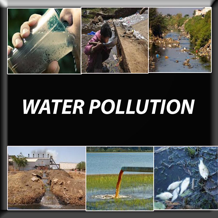 water pollution 3 essay